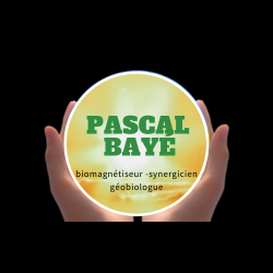 logo - Pascal Bayé - Biomagnétiseur synergicien & Géobiologue - Maubeuge - Valenciennes - Cambrai