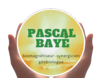 logo-wé3.png